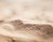 como-escolher-areia-para-construcao-distribuidora-campeao